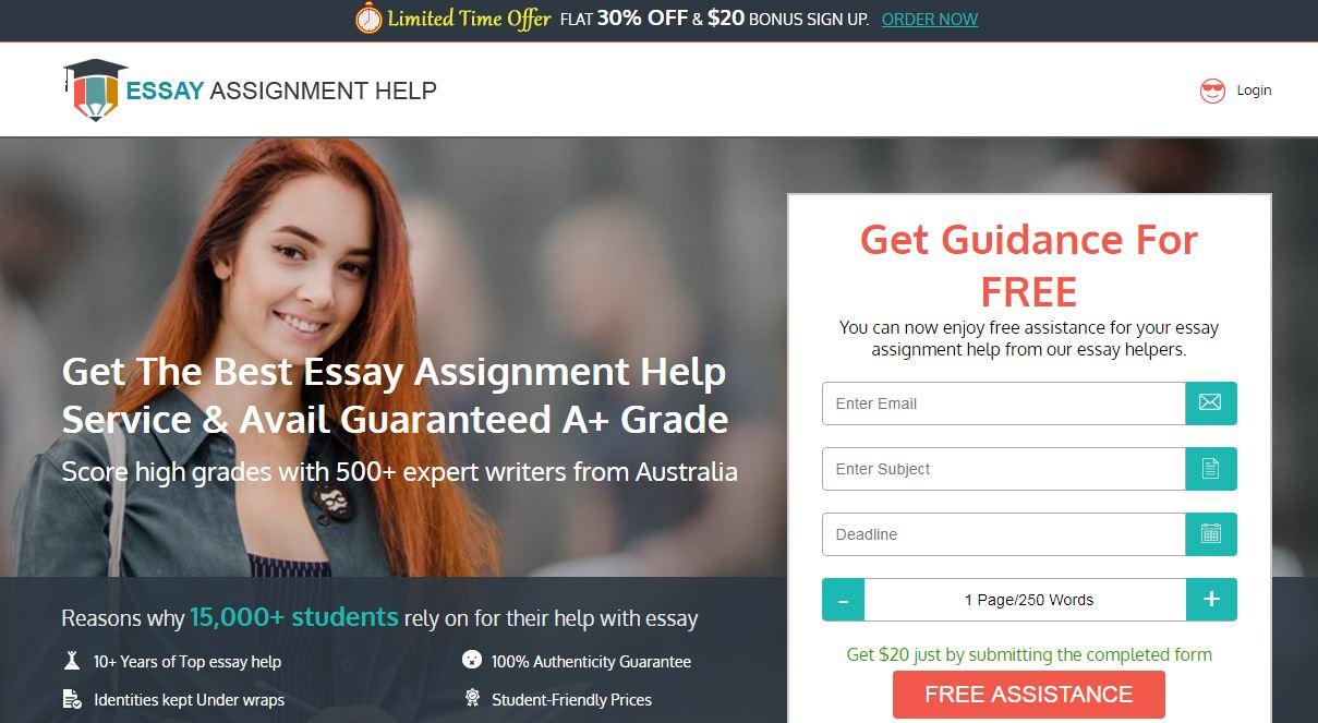 Essay assignment help