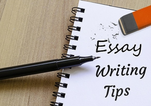 cách viết essay plan